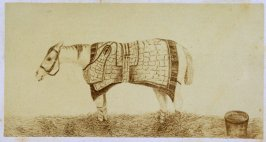 """""""The Sick Horse,"""" opposite page 39 in the book The Life of John Carter by Frederick James Mills (New York: Hurd and Houghton, 1868)"""
