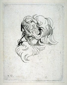 Bearded Man, from Recueil de Testes d'Antoine Van Dyck