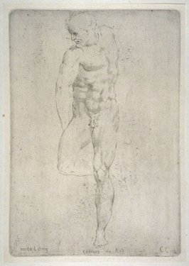 Study of a Male Nude, from the Cabinet du Roi