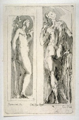 Studies of a Female and Male Nude, from the Cabinet du Roi