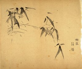 """Bent with Dew Drops""- No.4 from the Volume on Bamboo - from: The Treatise on Calligraphy and Painting of the Ten Bamboo Studio"