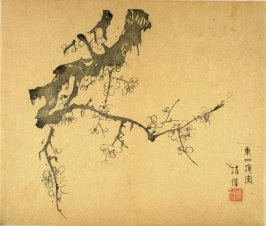 Plum branching downward as from over a wall, No.11 from the Volume on Plums - from: The Treatise on Calligraphy and Painting of the Ten Bamboo Studio