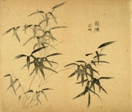 """Covered with Mist""- No.6 from the Volume on Bamboo - from: The Treatise on Calligraphy and Painting of the Ten Bamboo Studio"
