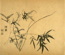 """Girdle of Orchids""- No.20 from the Volume on Bamboo - from: The Treatise on Calligraphy and Painting of the Ten Bamboo Studio"