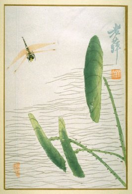 A Dragonfly and Lotus Leaves