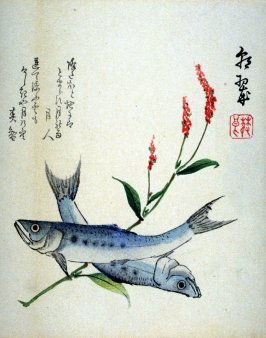 [Two fish and flowering grass]