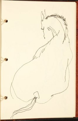 Untitled (Horse), Illustration 4 in the book The Birth of a Horse (sketchbook)