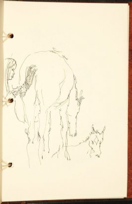 Illustration 8 in the book The Birth of a Horse (sketchbook)