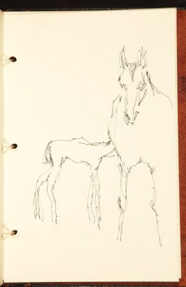 Illustration 11 in the book The Birth of a Horse (sketchbook)