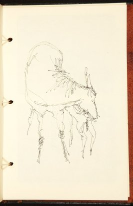 Illustration 12 in the book The Birth of a Horse (sketchbook)