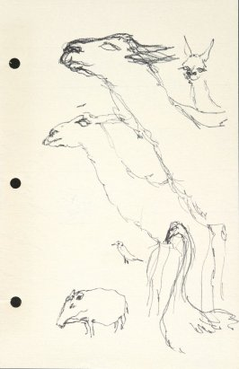 Untitled (Zoo animals), Illustration 36 in the book Sketchbook (National Finals Rodeo)