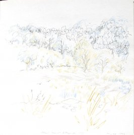 Adams Farm, Illustration 30 in the book Sketchbook (St. Helena)