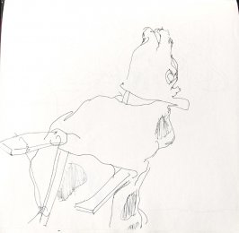 Untitled (Horse puppet), Illustration 34 in the book Sketchbook (St. Helena)