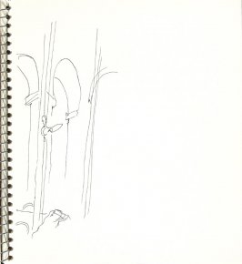 Untitled (Windows), Illustration 13 in the book Sketchbook (Europe and United States)