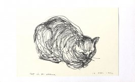 Cat in St. Helena, Illustration 42 in the book Sketchbook (Portraits)