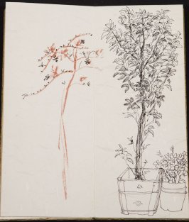 Untitled (Tree with shrub), Illustration 5 in the book Blanche's Pier (sketchbook)