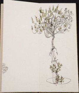 Untitled (Tree), Illustration 6 in the book Blanche's Pier (sketchbook)