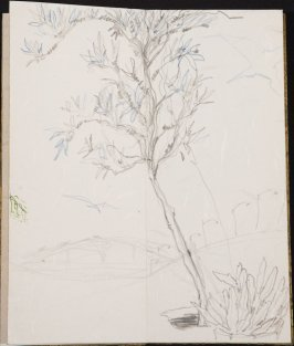 Untitled (Tree with a freeway), Illustration 15 in the book Blanche's Pier (sketchbook)