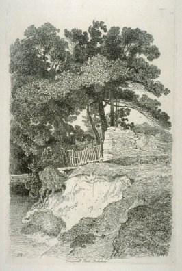 Duncomb Park, Yorkshire, plate 13 from Liber Studiorum