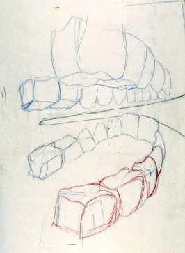Drawing 1 for Untitled (Medium Teeth) (Unpublished)
