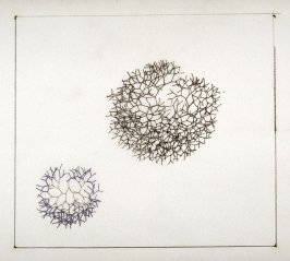 Drawing for Untitled (Small Branching Line)