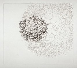 Working proof for Untitled (Large Branching Line) with Untitled (Small Branching Line) (unpublished)