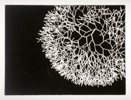 Working proof for Untitled (Medium Branching Line)(unpublished)
