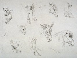 Plate 5 from - Landscape Animals in a Series of Perspective Studies
