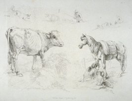 Plate 8 from - Landscape Animals in a Series of Perspective Studies