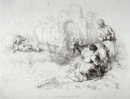 Plate 9 from - Landscape Animals in a Series of Perspective Studies