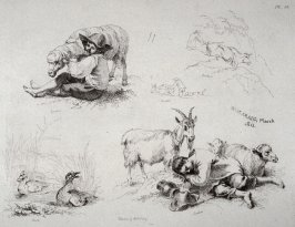 Plate 11 from - Landscape Animals in a Series of Perspective Studies