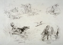 Plate 16 from - Landscape Animals in a Series of Perspective Studies