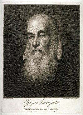 Portrait of a Man, after Bassano