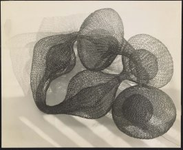 Untitled (Looped wire sculptural form on floor)