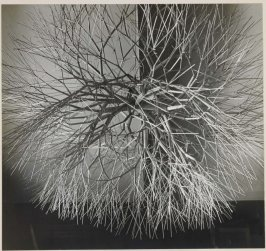 Untitled (Tied wire sculpture used for cover of Aperture monograph)