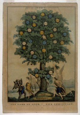 The Tree of Life / The Christian