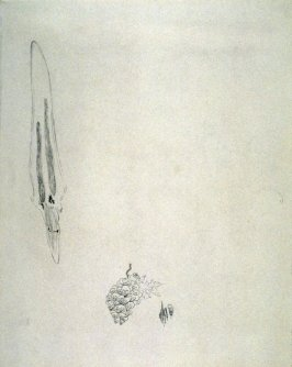 Pile of skulls and elongated object above