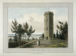 Nelson's Tower, Torres.