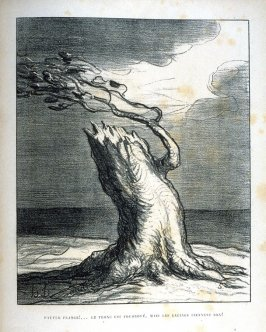 Pauvre France!...Le tronc est foudroyé, mais les racines tiennent bon! (Poor France!...The trunk Is blasted, but the roots hold fast), thirty-second plate in the book, Album du Siége
