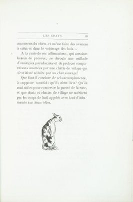 """Le chat maigre, dessin d'E. Delacroix"", end device pg. 85, in the book Les Chats (Cats) by Champfleury (Paris: J. Rothschild, 1870)."