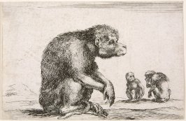 Untitled (Seated Monkeys) from Diversi Animali