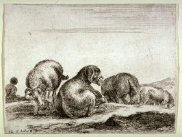 A Shepherd and Sheep, from the series Diversi Animali