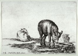 Mules, from the series Diversi Animali