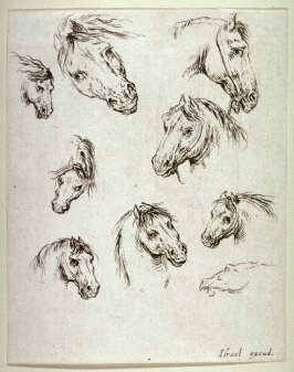 Nine Horses's Heads, from the series Diverses testes et figures