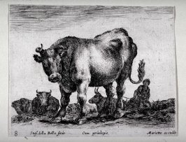 A Bull, from the series Diversi Animali
