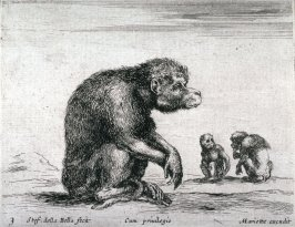 Monkeys, from the series Diversi Animali