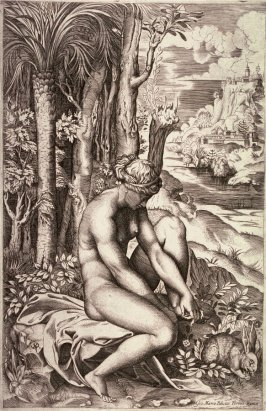 Venus Wounded by the Rose's Thorn