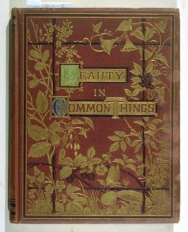 Beauty in Common Things, Illustrated by Twelve Drawings from Nature by Mrs. J. W. Whymper Printed in Colors by William Dickes (London: Society for Promoting Christian Knowledge, [ca. 1860])