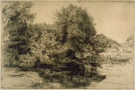 Trees at Edge of Water, Man Standing at Right