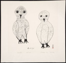 Young Owls, Sonset